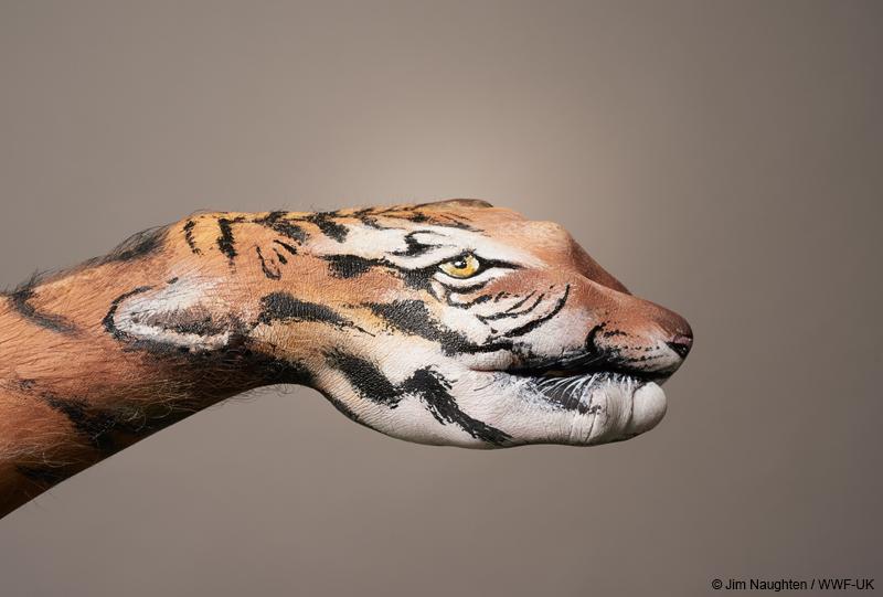 Tiger hand art